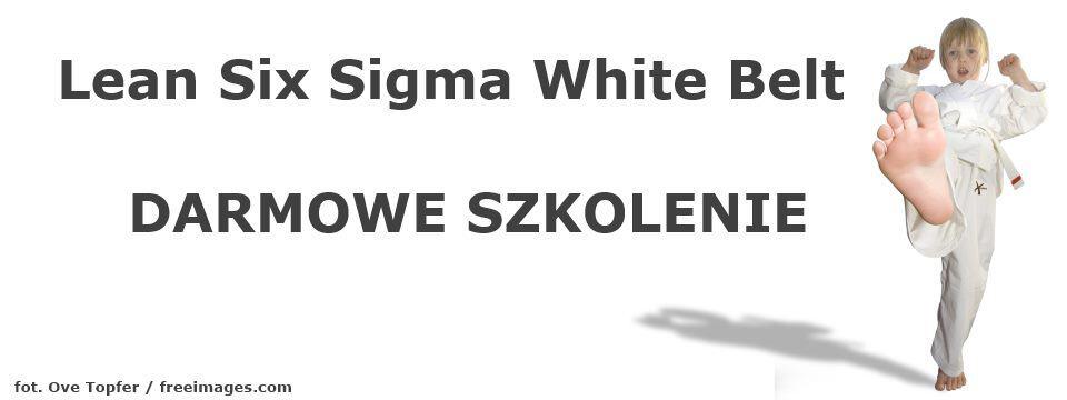 Darmowe szkolenie Lean Six Sigma White Belt